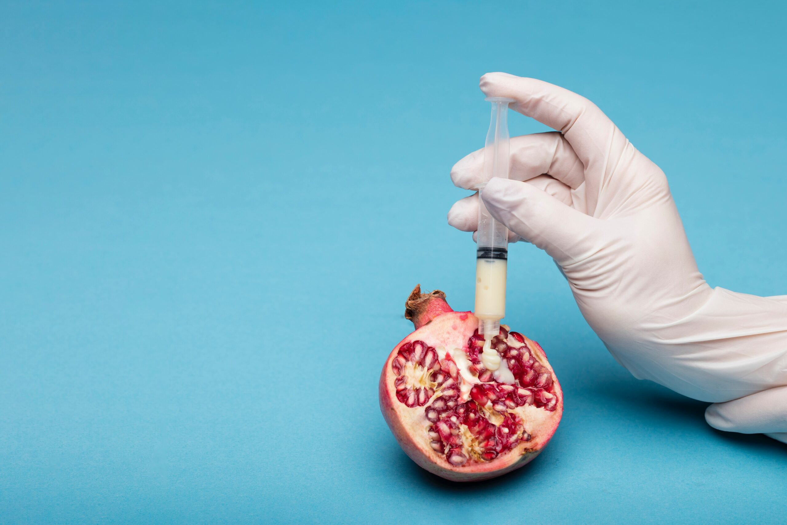 Pomegranate with syringe - Surrogacy
